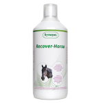 Recover-Horse-Synopet