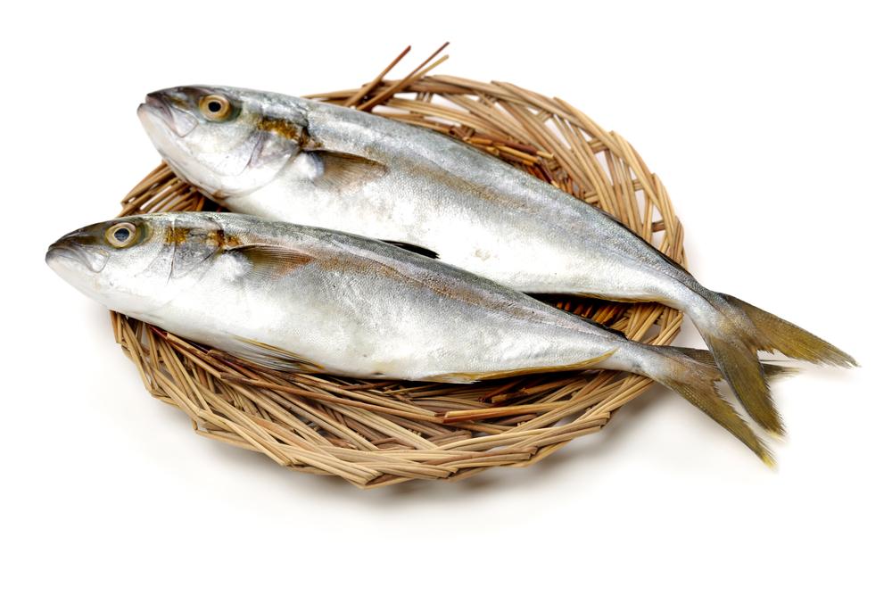 Makreel Omega 3-vetzuren