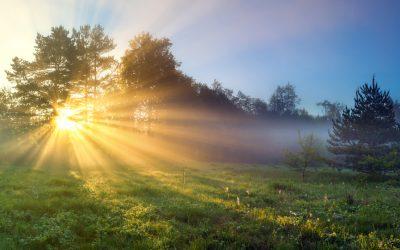 Het nut van zonlicht